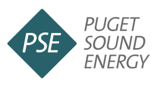 PSE graphic - EnviroSmart Solution